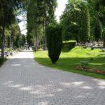 alejka na cmentarzu komunalnym